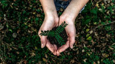 Umweltschutz Planet Erde