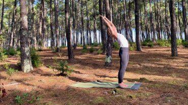 Yogamour Herbst Retreat 2